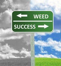 mariujana legalization cons